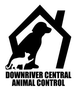 DCAC_home_logo_lg