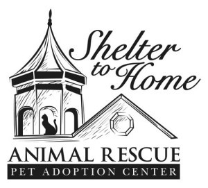 shelter to home Logo